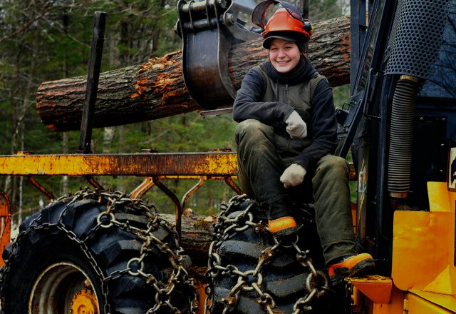 Abattage manuel et débardage forestier